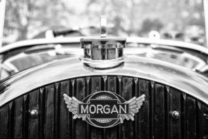 6511-morgan